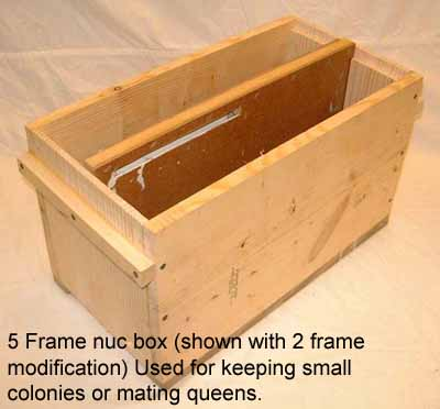 5 frame nuc box picture