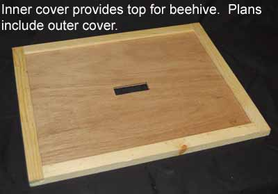 Bee Hive cover picture