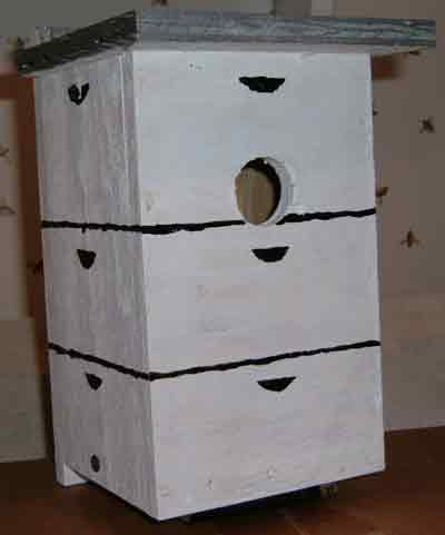 Bird House 2b picture